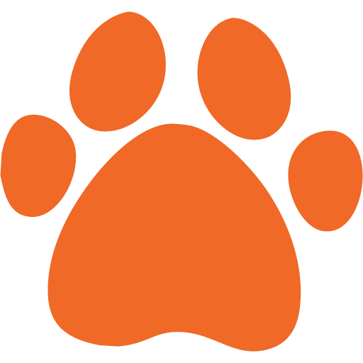 syncore-medical-veterinary-orange-paw-icon